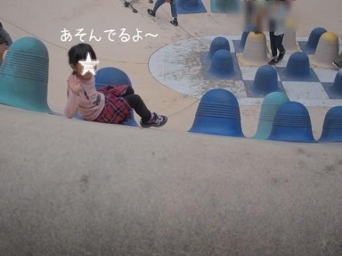 PA087726.jpg