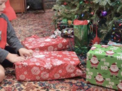 クリスマスプレゼント もみの木