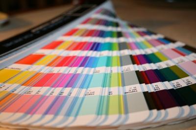 照らし合わせる カラー見本