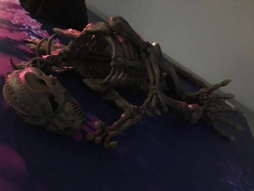 ロボに改造される前のゴジラの骨