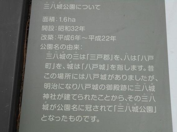 DSCN1784 - コピー