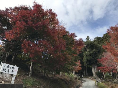 2017高蔵寺:三重塔・4
