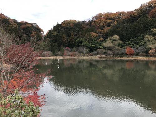 【2017.紅葉ポタリング】白水阿弥陀堂・6