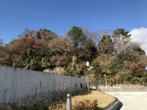 【磐城平城復元計画の是非】・15