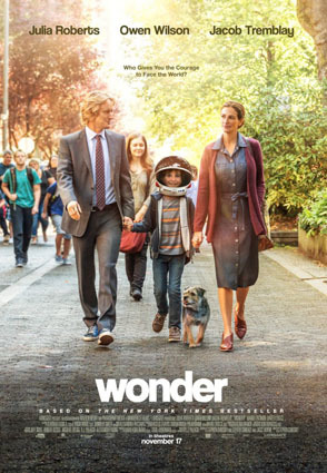 wonder_2.jpg