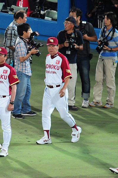 398px-Hoshino_sennichi.jpg