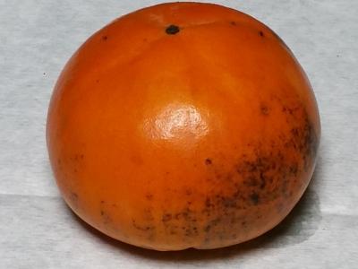 西村早生柿の表面の汚れ