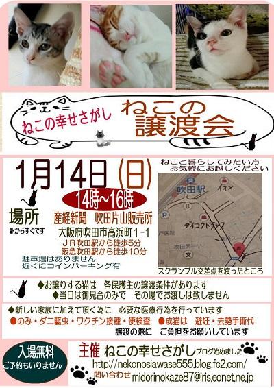 譲渡会 ポスター-1-400