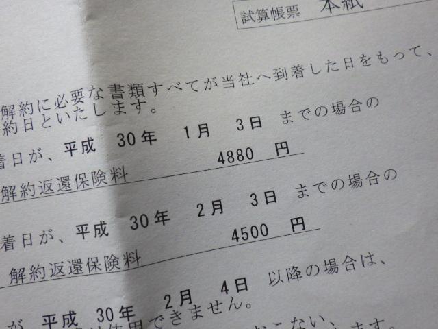 17086468.jpg