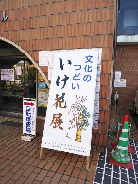 DSC_0067 (1)