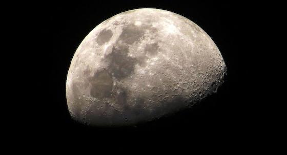月 ジャガイモ 嫦娥4号 環境汚染