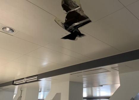 「豊洲市場の狭い連絡通路でフォークリフトを上げたら天井に穴が空いた。築地市場なら大丈夫だった。設計が悪い」