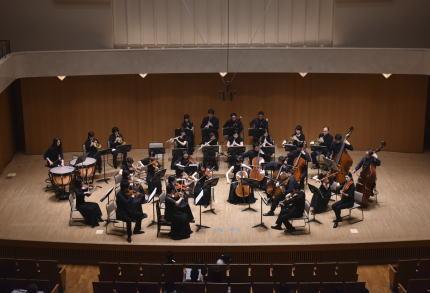 音楽大学 オーケストラ 就職