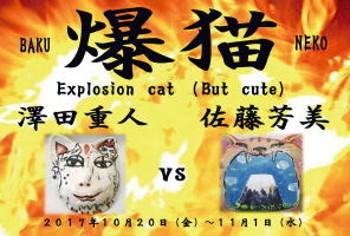 爆猫 猫の額