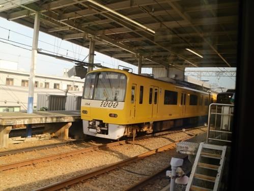IMG_1604  黄色い