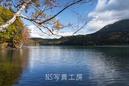 _DSC5136.jpg