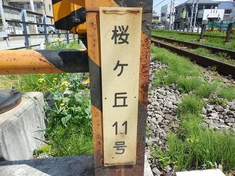 小田急江ノ島線の桜ヶ丘11号踏切@大和市b