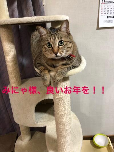 fc2blog_20171230160831e9c.jpg
