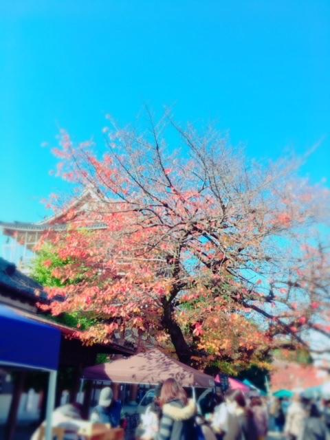 2017.11.28東別院