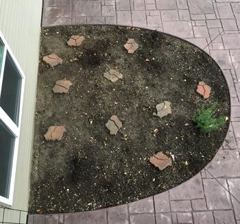 garden110317.jpg