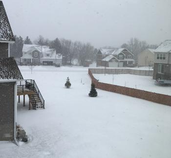 snow01141801.jpg