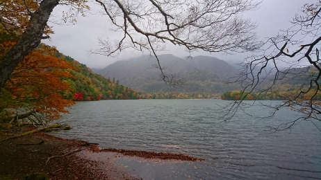 2017_Oct_Nikko_14.jpg