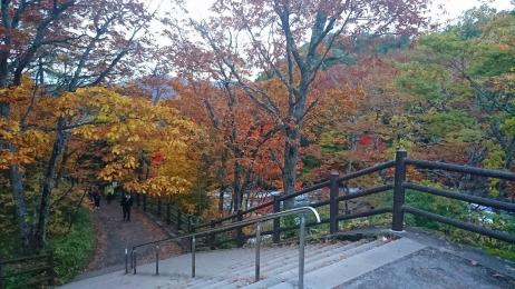 2017_Oct_Nikko_23.jpg