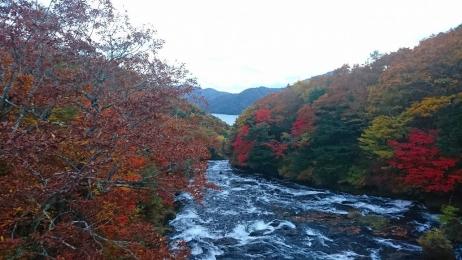 2017_Oct_Nikko_24.jpg