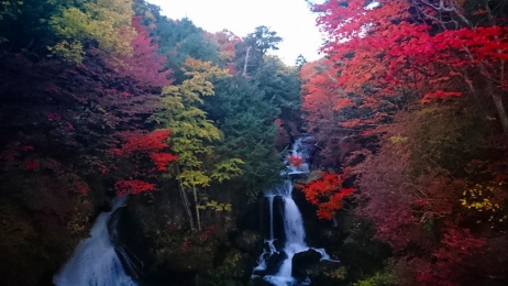 2017_Oct_Nikko_26.jpg