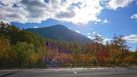 2017_Oct_Nikko_3.jpg