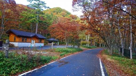 2017_Oct_Nikko_6.jpg