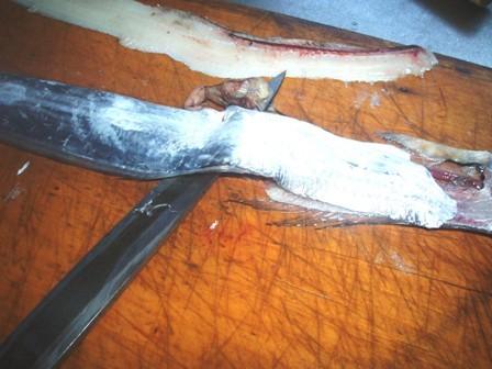 ヒレの下から包丁を入れて尾のほうへ滑らせるブログ用
