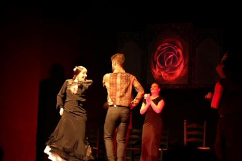 18 teatro flamenco madrid