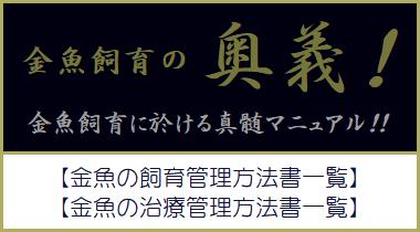 金魚飼育の奥義・真髄マニュアル