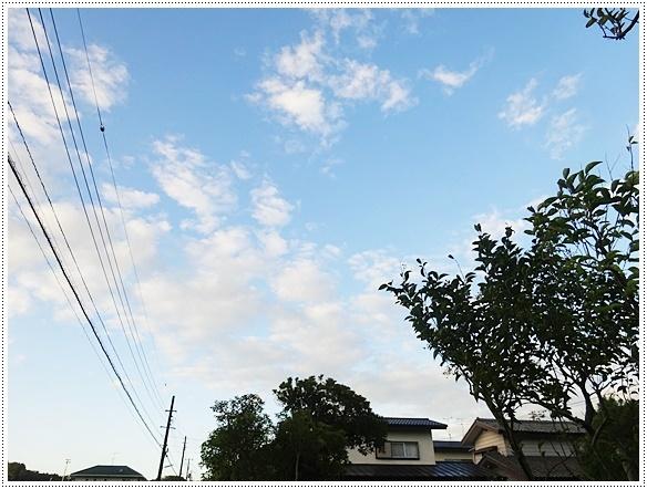 DSC01698-2.jpg