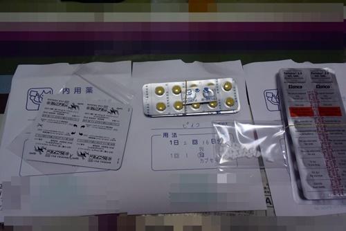 DSC_9385a.jpg