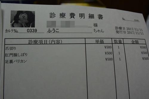DSC_9391a.jpg
