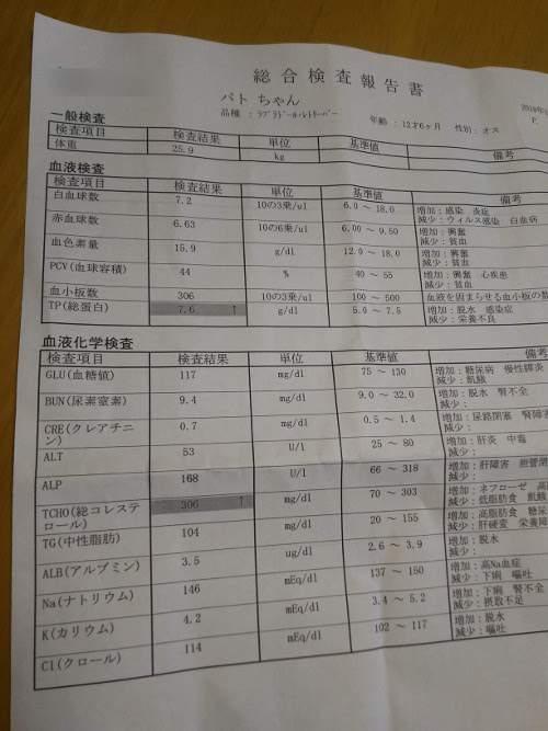DSC_0009 (3)