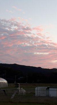 【写真】ビーナス・ベルトの夕焼け空の下で押し相撲をして遊ぶアランとポール