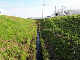【写真】受付ハウスと本圃ハウスの間にある土手の溝を掃除したところ