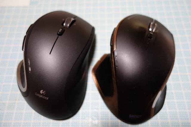 マウスDSC09509 (640x427)