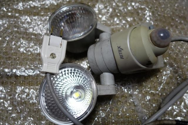 カメラBOX2DSC09642 (640x427)
