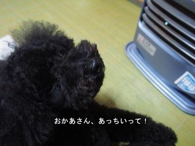 PC022569.jpg