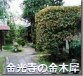 金光寺の金木犀