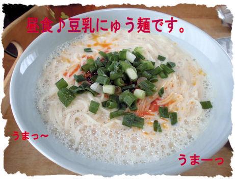 お昼はにゅう麺