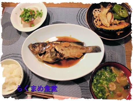 ガヤメバル定食