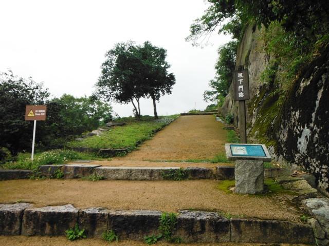 苗木城 (156)