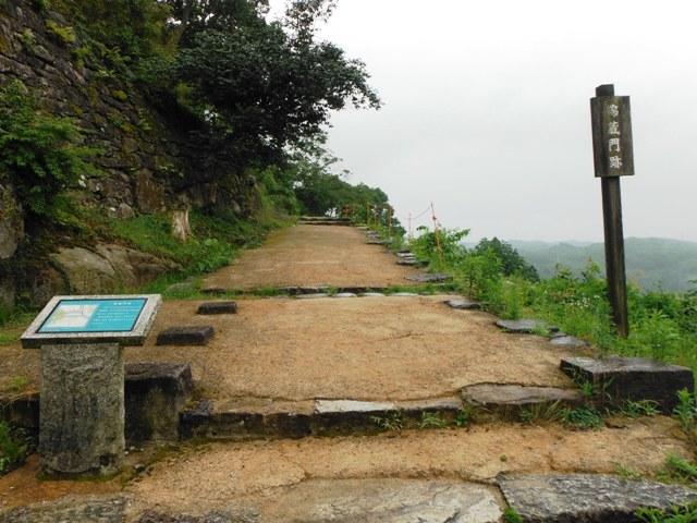 苗木城 (159)