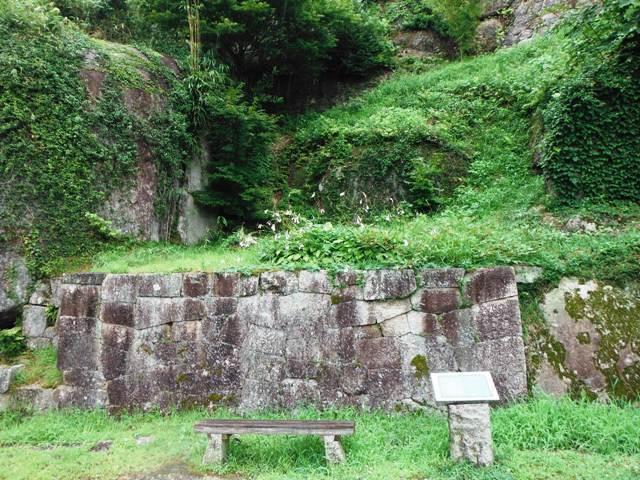苗木城 (161)