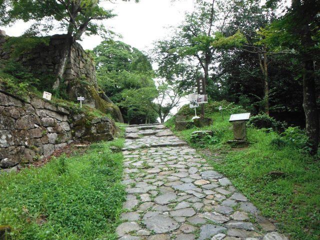 苗木城 (214)